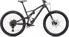 Stumpjumper EVO Comp Carbon 29 2020