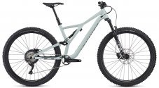 Stumpjumper ST Comp Alloy 29 2020 - GLOSS WHITE SAGE / BLACK M