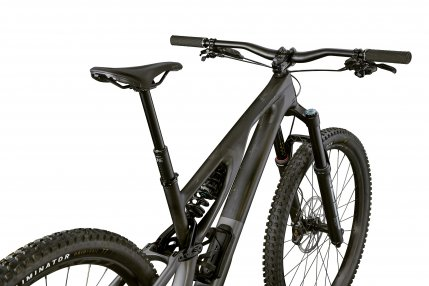 Stumpjumper EVO LTD 2021